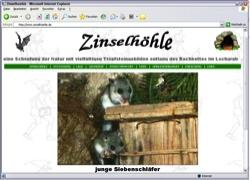 Beschreibung von www.zinselhoehle.de