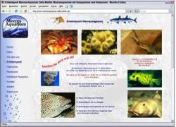 """Website in neuem Fenster öffnen - Wasserwelt lockt mit """"Streichelzoo"""" und  Raubfischen"""