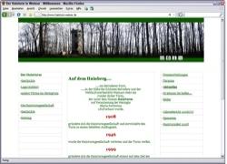 Website in neuem Fenster öffnen - Der Hainturm im Belvederer Forst wird Stück für  Stück erneuert