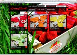 Website in neuem Fenster öffnen - Thüringer Team erschafft eine coole, luxuriöse und bunte Lifestyle-Welt